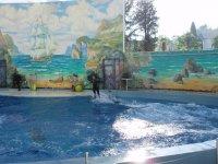 Парк Ривьера. Дельфинарий.