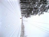 Беговая лыжня