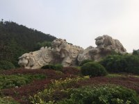 парк тигра