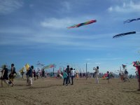 Фестиваль воздушных змеев на пляже парка
