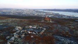 Вид на город из ближайшего леса