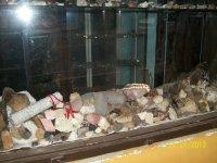 Так выглядят необработанные камни