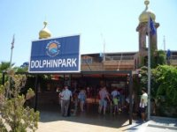 Дельфинарий.