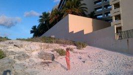 Игуаны возле отеля на пляже