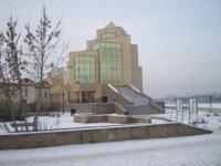 Взгляд на сооружение с улицы Кирова.