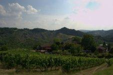 Виноградники, домики в окрестностях Болоньи