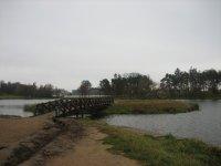 Озеро и островок в парке