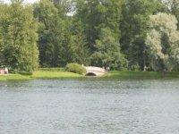 Вокруг пруда