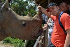 На удачу нужно подержаться за рог носорога!