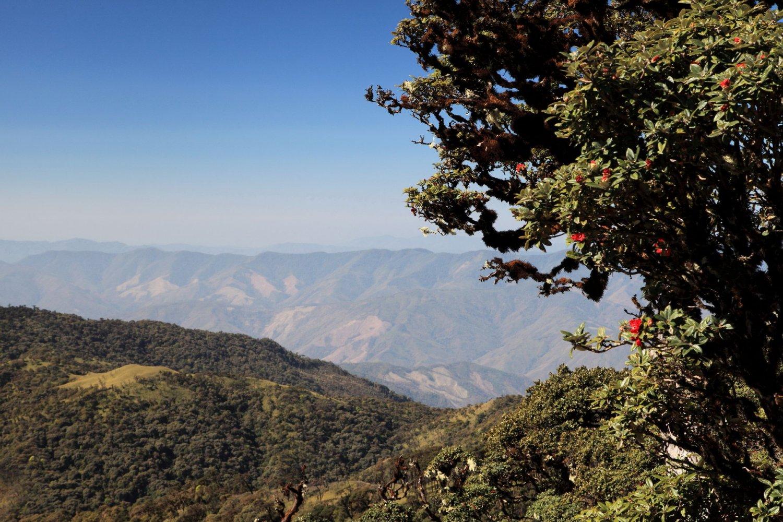 Горы штата Чин