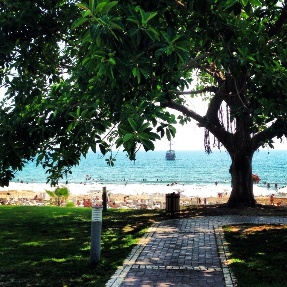 Лужайка и пляж