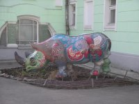 Уникальный носорог