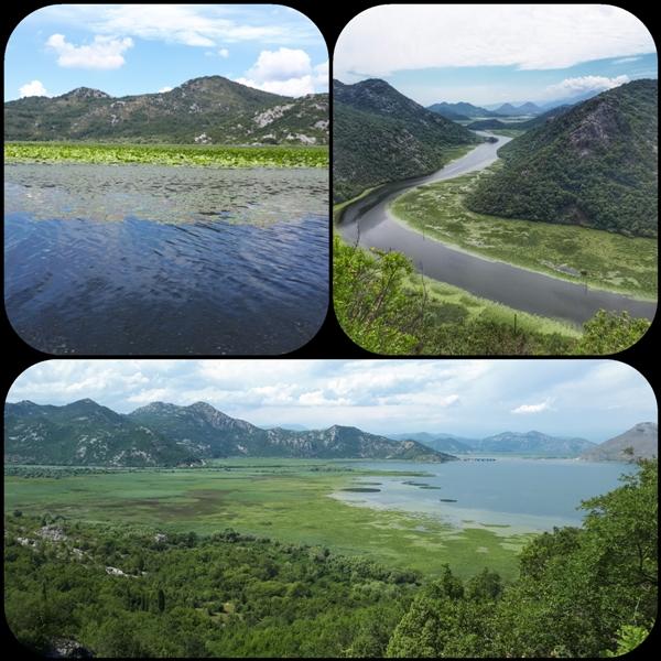 Скадарское озеро и река Црноевича