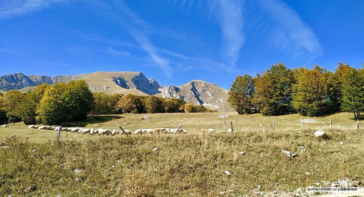 Каньоны — красота и величие севера Черногории