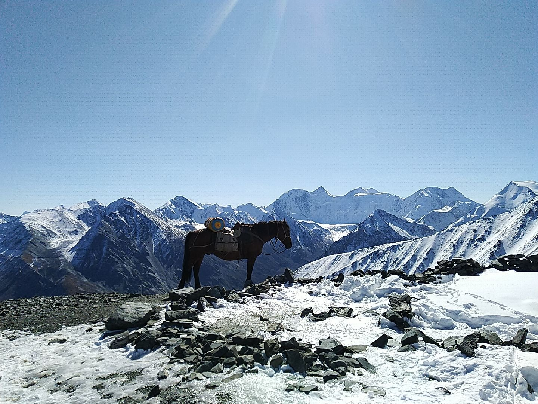 К священной горе Белуха на конях