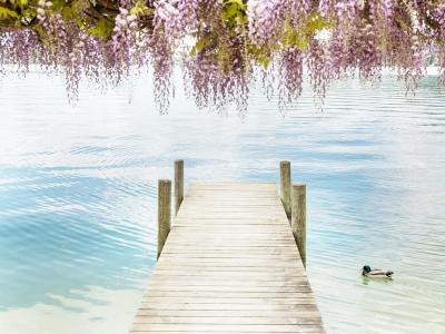 Чарующая бирюза озера Вёртерзее