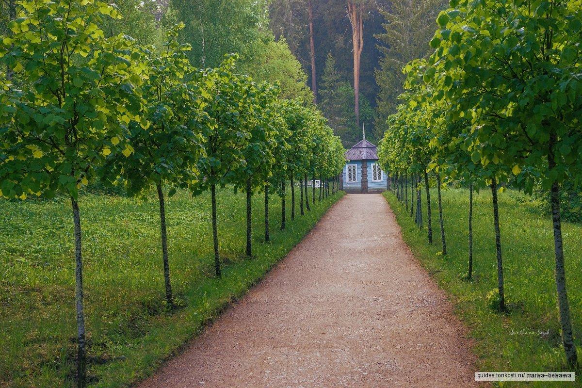 Индивидуальная экскурсия в Пушкинские Горы