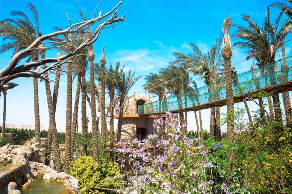 Грандаквариум — знакомство с живым миром Египта