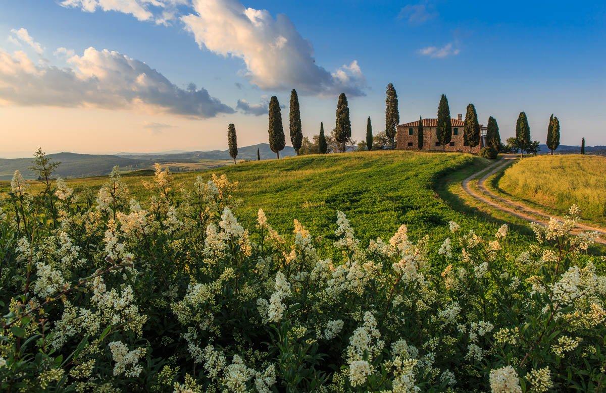 Кулинарные туры в Тоскане