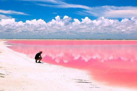 Экскурсия 8 в 1 «розовые озера, замок пирата, сенот, мангровые реки, крокодилы»