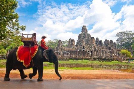 С Пхукета в Камбоджу. Сезон 2019-2020