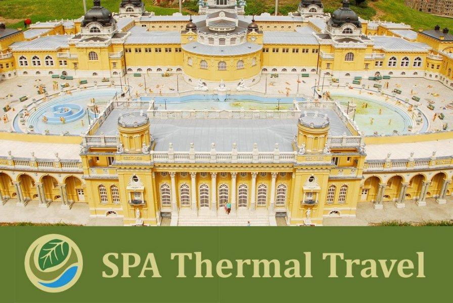 Экскурсионное посещение термальной купальни Будапешта