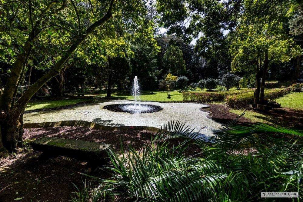 Ботаническая экскурсия по парку Жозе ду Канту