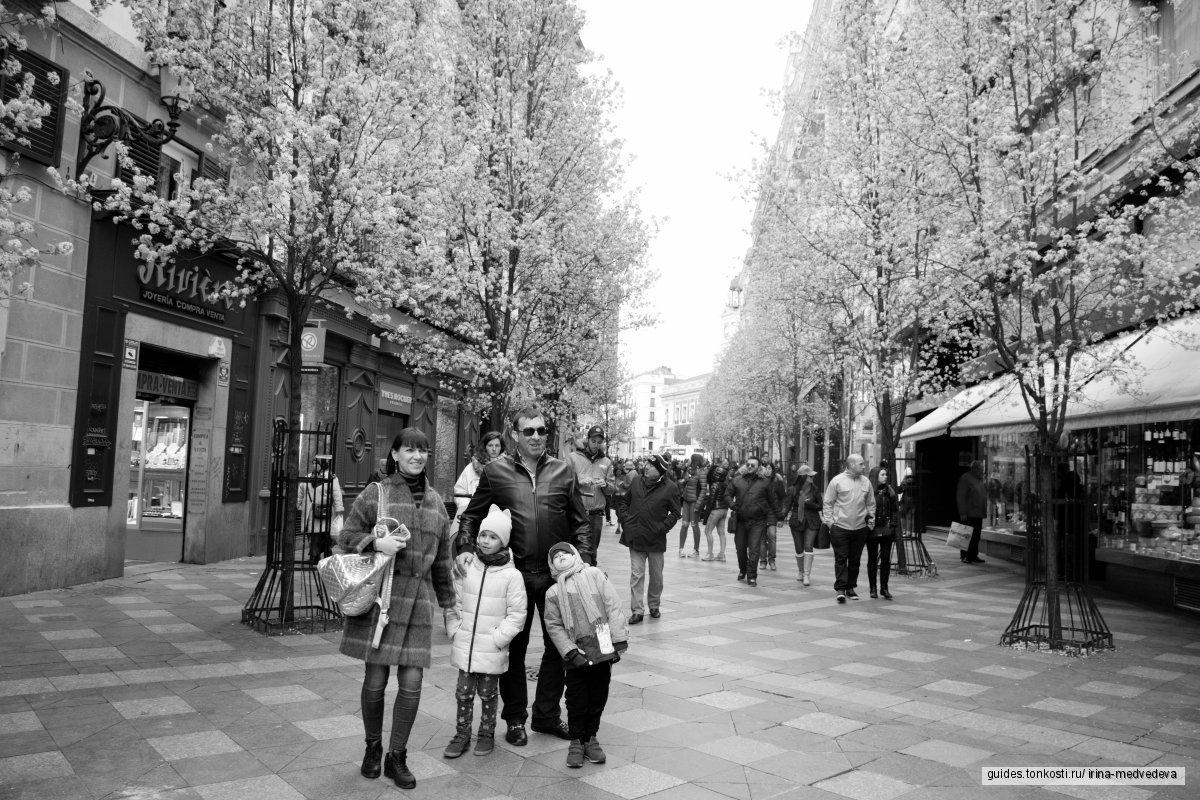 Фотопрогулка по Королевскому Мадриду