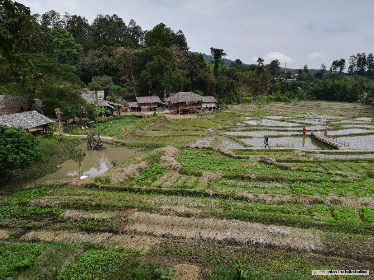 Таиланд, «Весь север Таиланда за 5 дней»