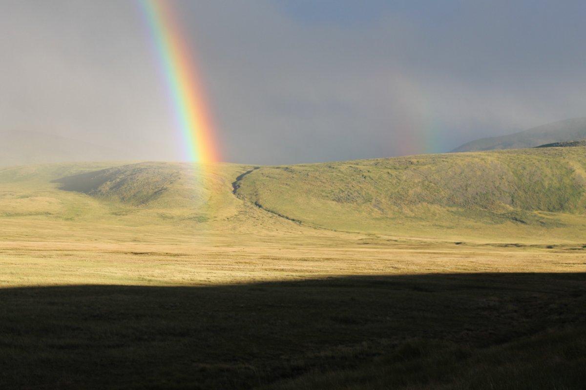 Алтайский кольцевой маршрут с посещением плато Укок