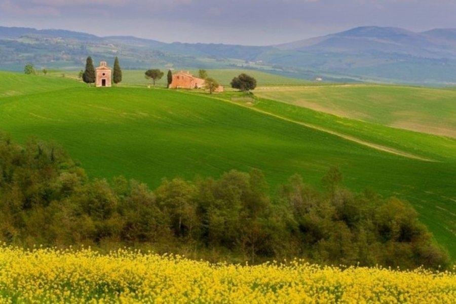 Винные дороги Тосканы