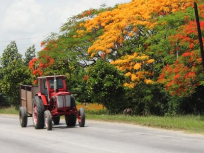 Путешествие «Настоящая Куба»