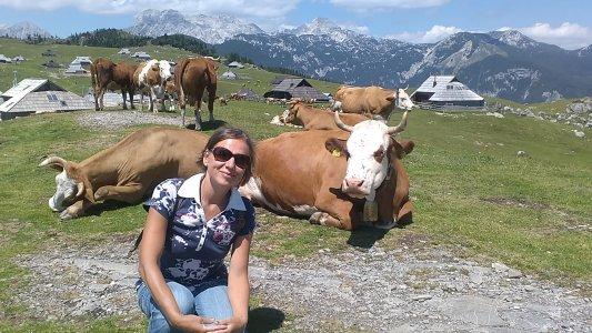 Для любителей природы — долина реки Камнишка-Бистрица, Велика Планина