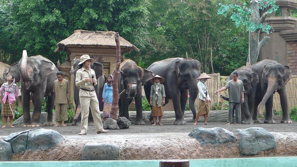 Сафари 4х4 на Бали