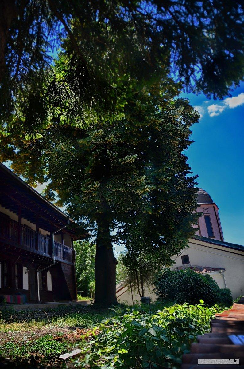 Однодневная экскурсия в Велико-Тырново