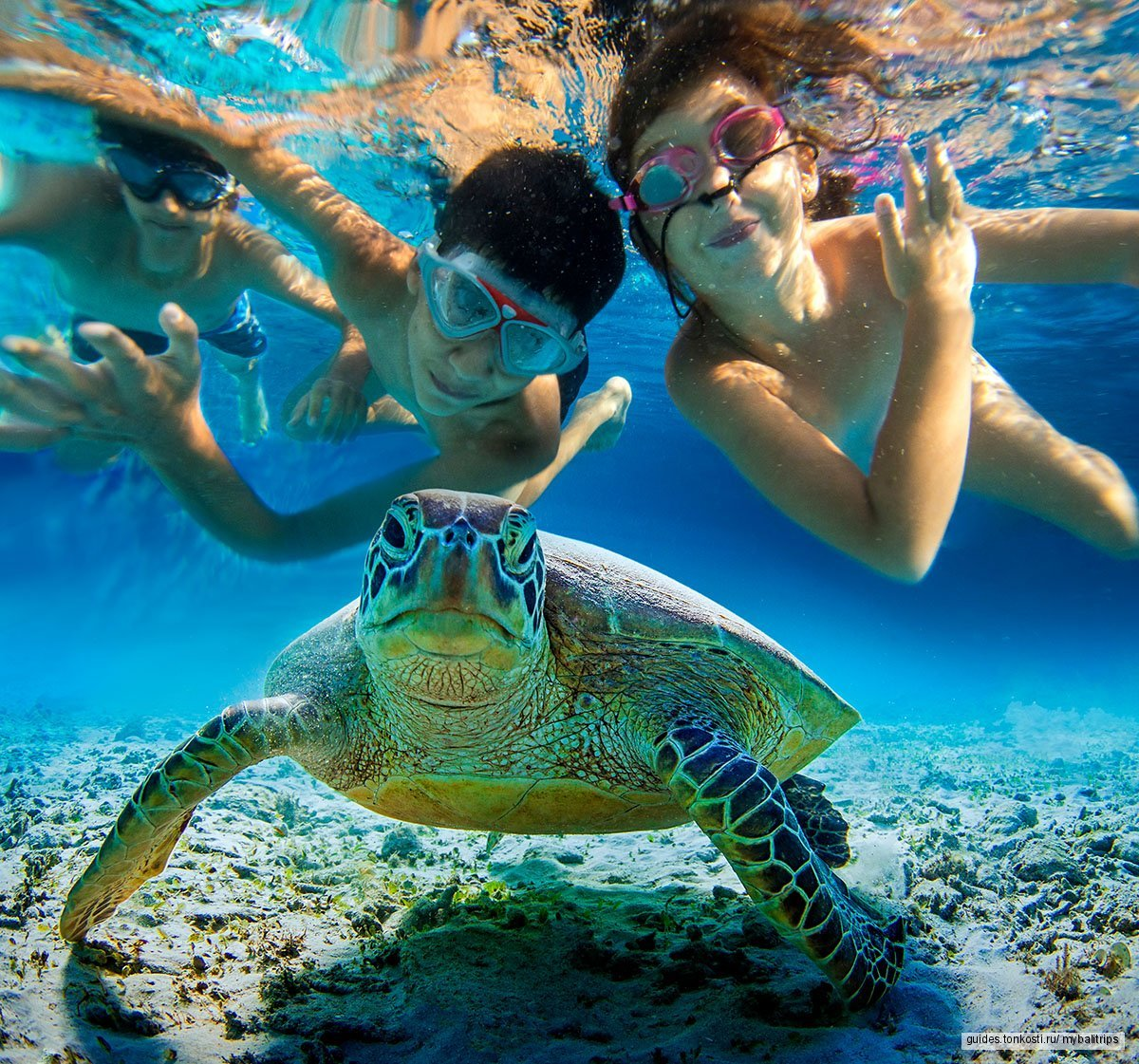 Снорклинг на Бали в Голубой лагуне