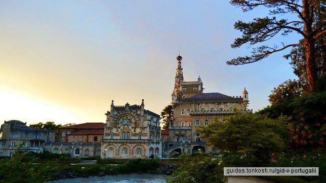 Выездная экскурсия из Порту в Коимбру, лес Бусаку и винодельню игристых вин