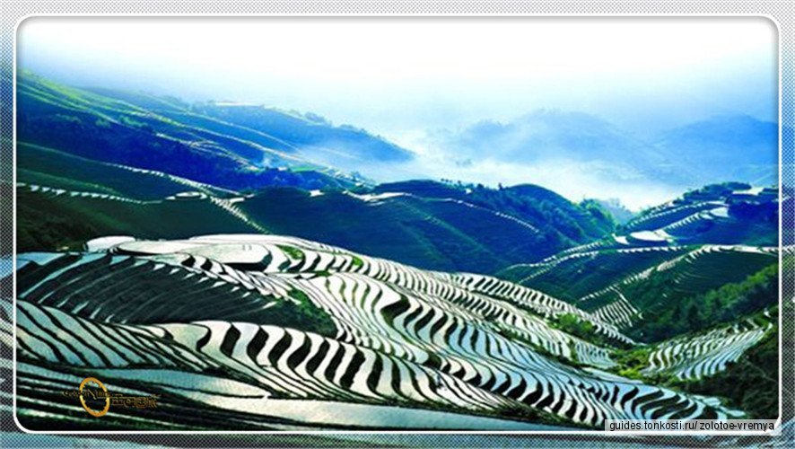 Экскурсия на рисовые террасы
