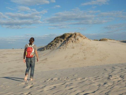 Пески и леса Куршской косы