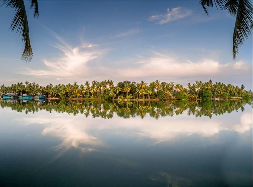 4 дня в Керале, знакомство с древней культурой и занятия йогой