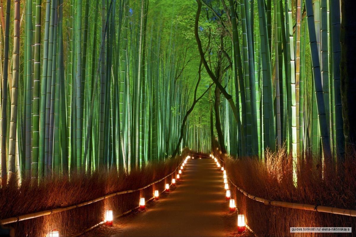 Киото — столица мира и спокойствия