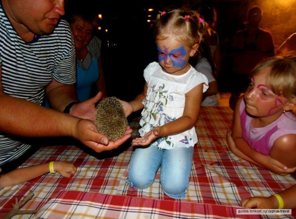 Сафари на осликах + Кипрский вечер