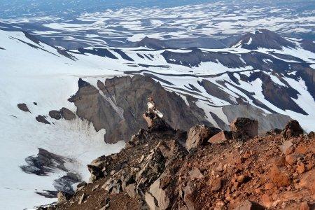 Камчатка. Козельский вулкан