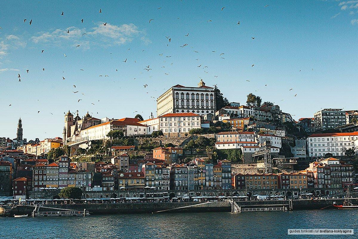 Экскурсия «Неподражаемый Порту» + пикник на реке