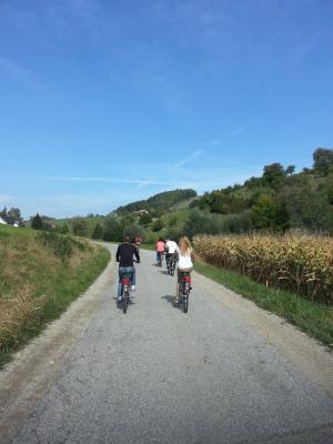 На велосипедах по винной дороге, Марибор и окресности — авто-пешеходная и велосипедная экскурсия