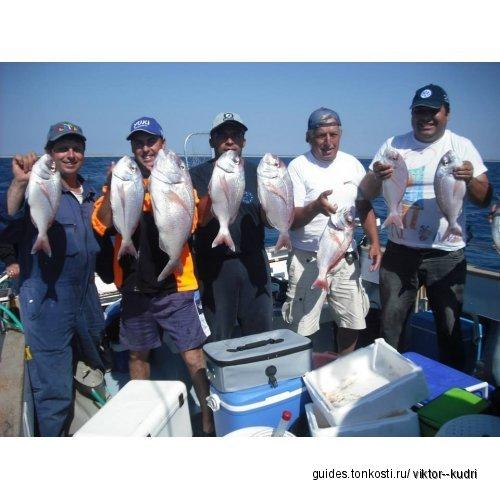 Морская рыбалка в Португалии