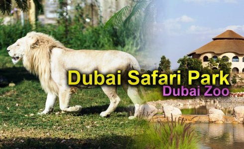 Зоопарк Dubai Safari Park