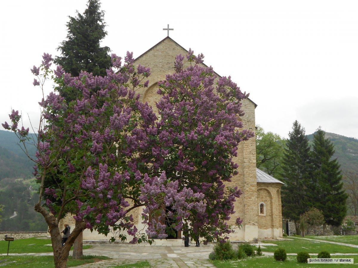 Средневековые монастыри Сербии
