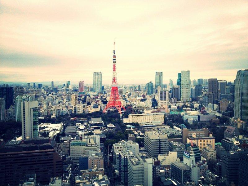 Обследование и лечение в клинике Токио