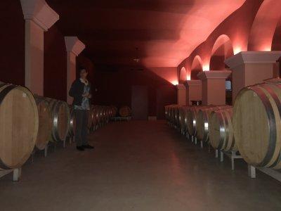 Дегустация провансальского вина — винодельческое шато Белле